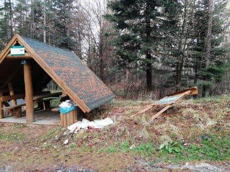 Zniszczyli tablice i wiaty na terenie lasu - Zdjęcie główne
