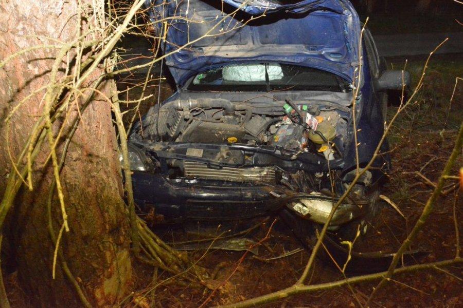 Nastolatka skończyła jazdę uderzeniem w drzewo! Dwie osoby w szpitalu [ZDJĘCIA] - Zdjęcie główne