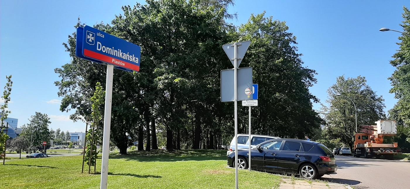 Pikieta przy ul. Dominikańskiej. Będą bronić 41 drzew przed wycinką - Zdjęcie główne