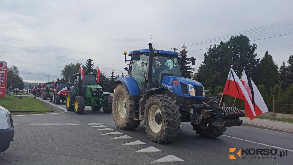 Ogromny protest w stolicy! Byli rolnicy z Podkarpacia [FOTO, AKTUALIZACJA] - Zdjęcie główne