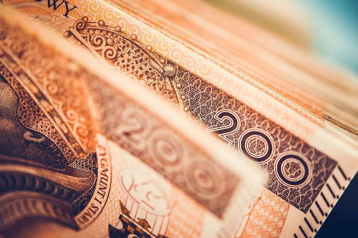 Kto ma najlepsze zarobki w Polsce? Wypłata o której wielu marzy - Zdjęcie główne