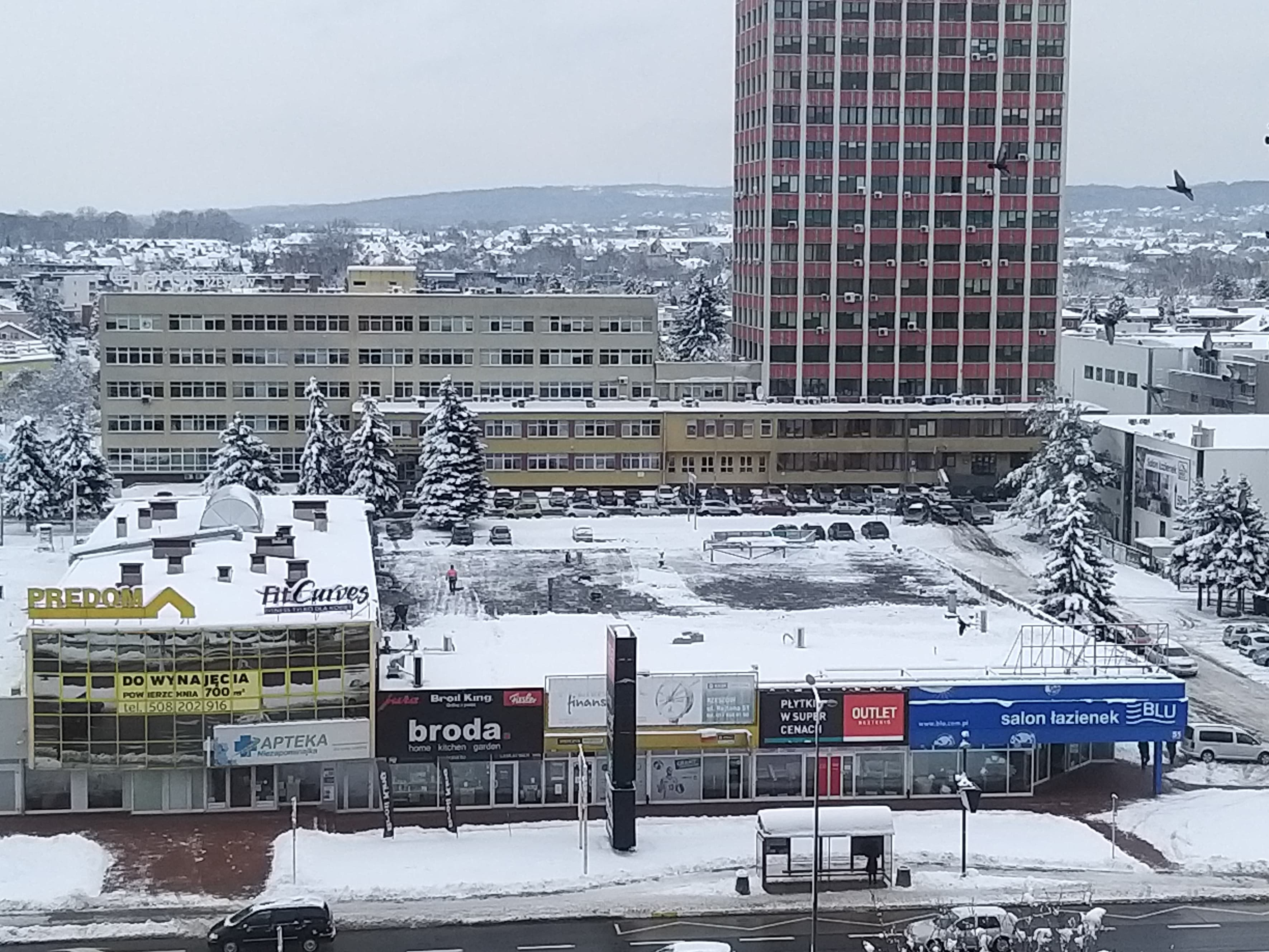 Katastrofa w Rzeszowie przypomniała o obowiązku usuwania śniegu z dachów - Zdjęcie główne