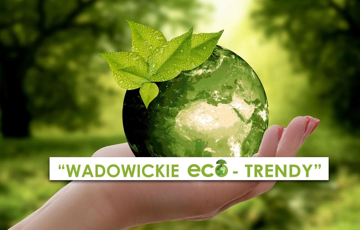 """Projekt ekologiczny """"Wadowickie eco - trendy"""" - Zdjęcie główne"""