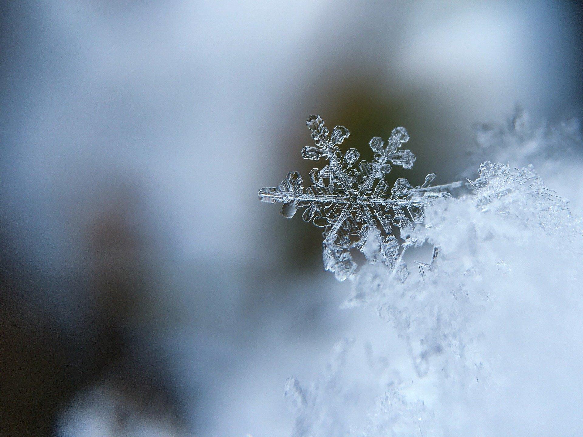 Mróz i śnieg - zimowy architekci mogli się wykazać - Zdjęcie główne