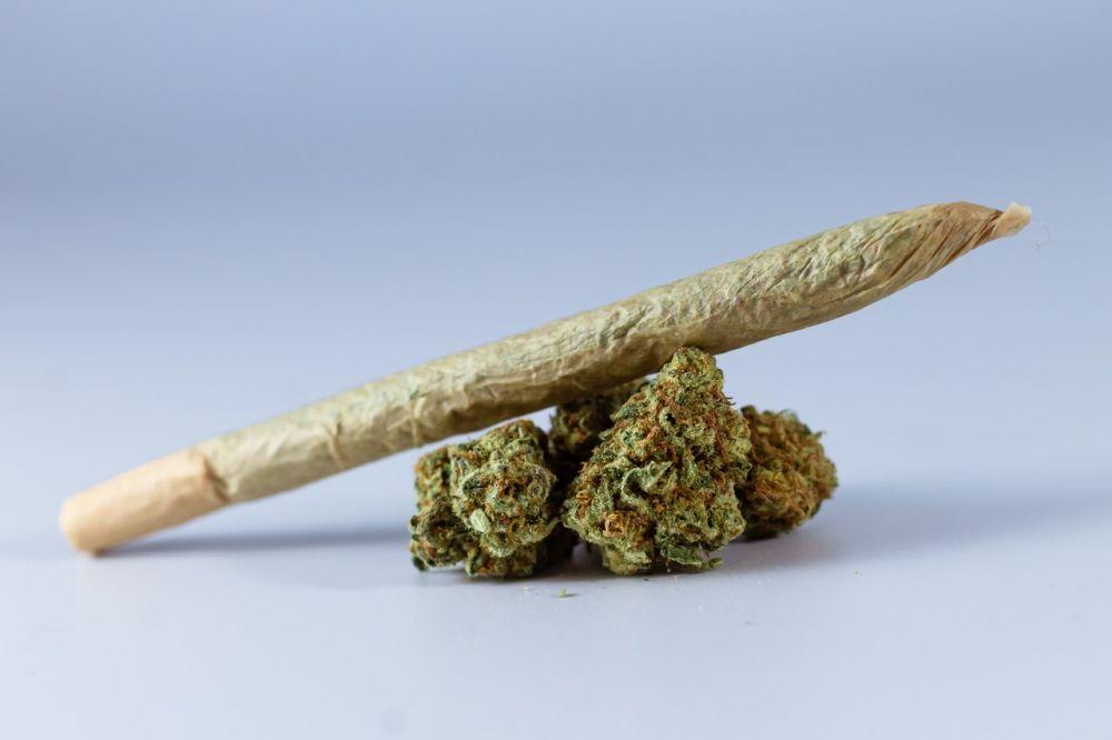 Zabawa z dziećmi w dymie marihuany - Zdjęcie główne