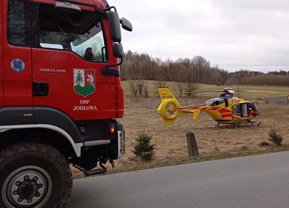 TRAGEDIA podczas wycinki drzew! - Zdjęcie główne
