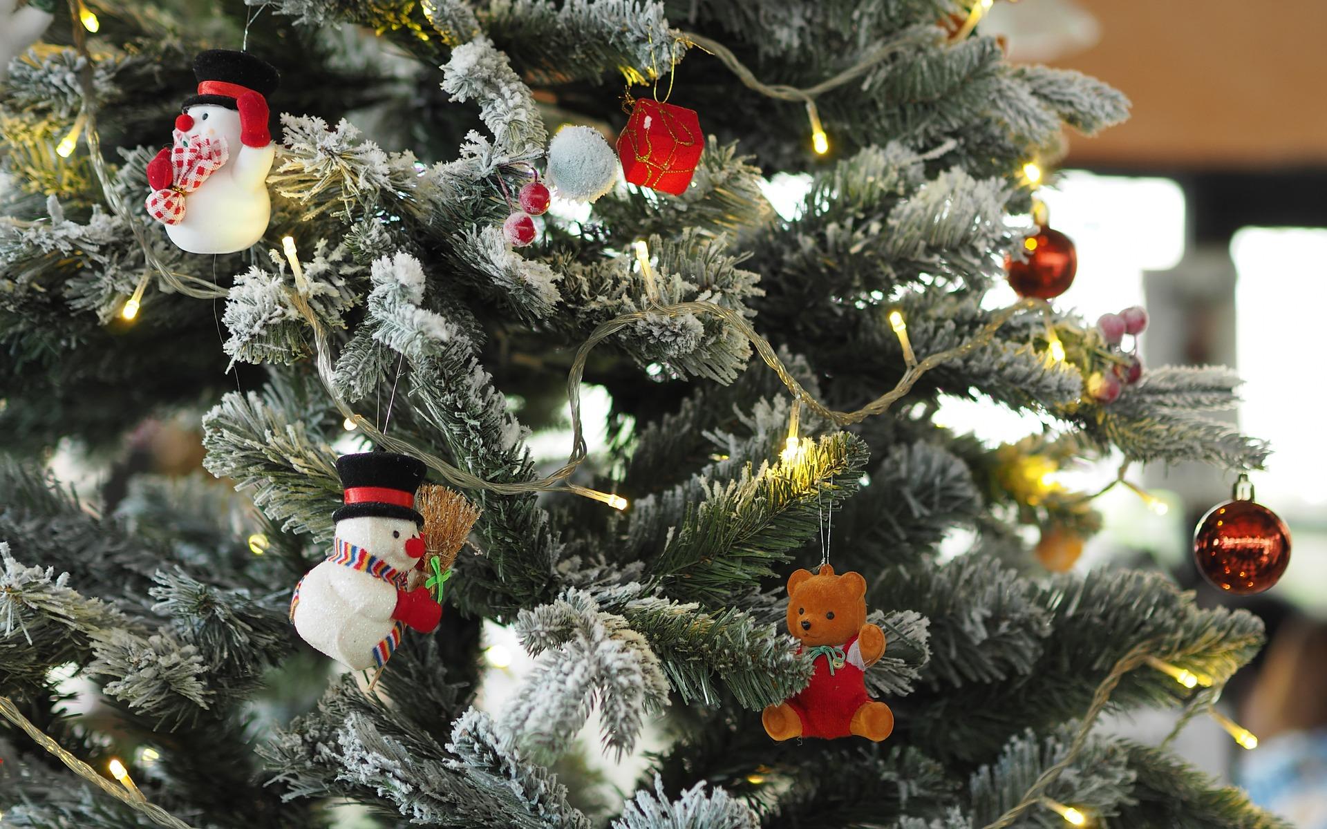 Kiedy należy rozebrać drzewko bożonarodzeniowe? - Zdjęcie główne