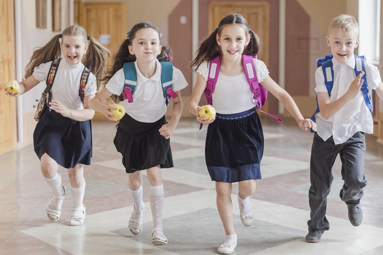 Gmina Niwiska. Rozpoczyna się nowy rok szkolny. Sprawdź godziny odjazdów autobusów szkolnych - Zdjęcie główne