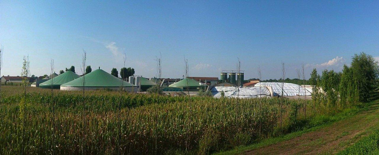 Dwie biogazownie powstaną w Dzikowcu. Inwestorzy otrzymali już pozwolenia i dofinansowanie  - Zdjęcie główne