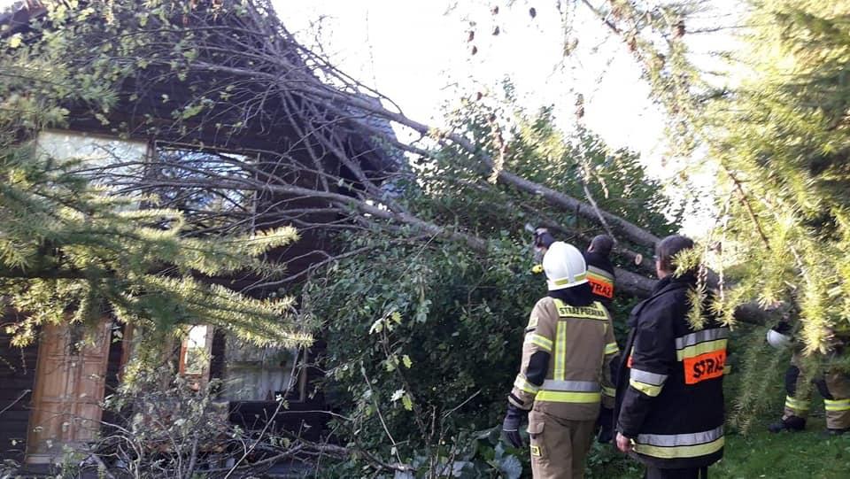 Silnie wiatry w Bieszczadach. Strażacy interweniowali [FOTO] - Zdjęcie główne