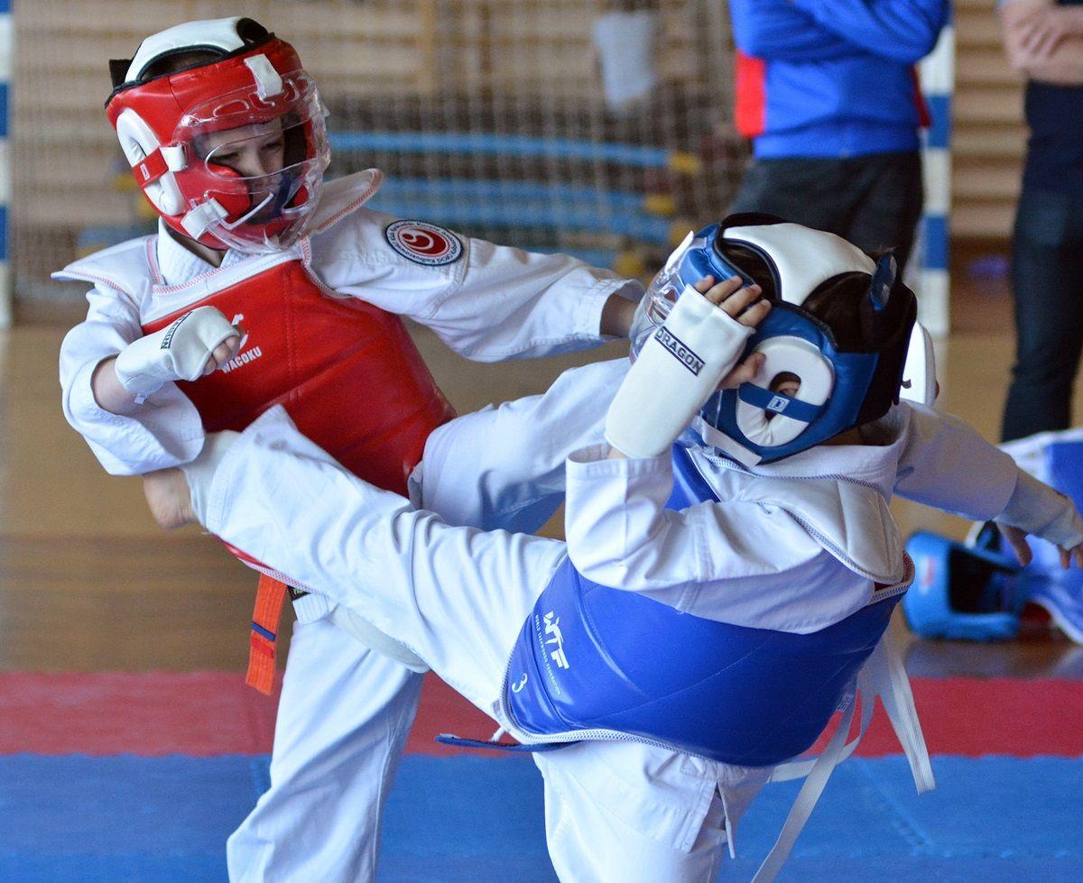 Turniej Podkarpackiej Ligi Karate Dzieci w Kolbuszowej [ZDJĘCIA] - Zdjęcie główne