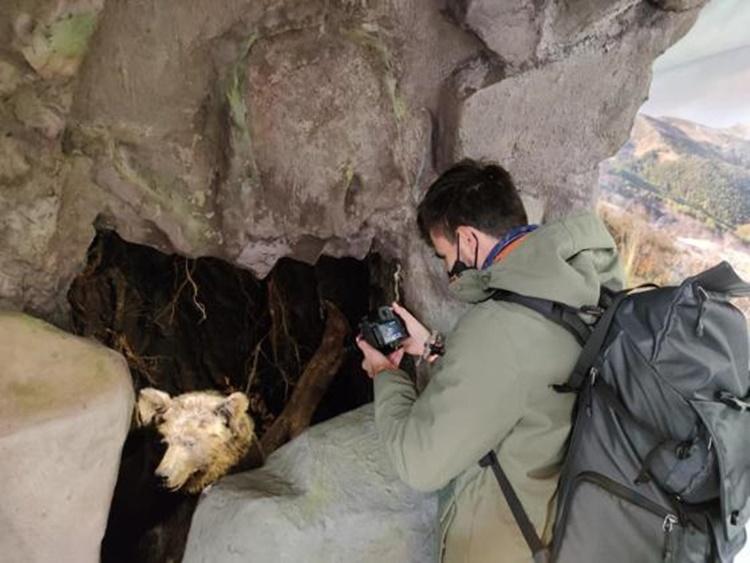Opuszczone wioski na Podkarpaciu. Blogerzy odkryli tajemnicze miejsca - Zdjęcie główne