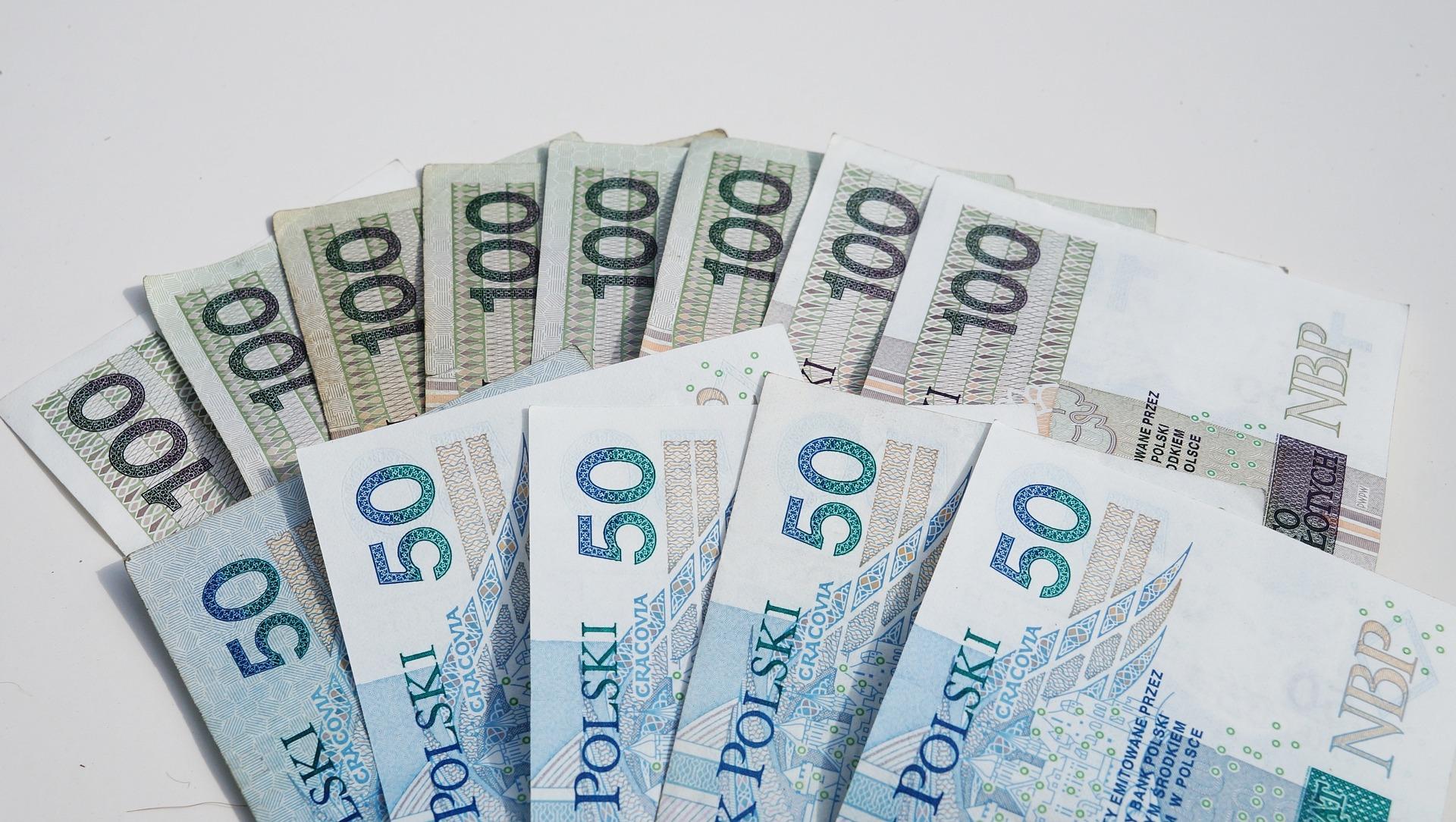 Gmina Niwiska. Sprawdź, jakie inwestycje zrezalizują sołectwa w ramach funduszu sołeckiego  - Zdjęcie główne