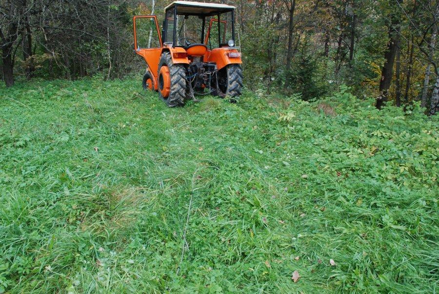 Z PODKARPACIA: W trakcie wycinki w lesie traktor przejechał po mężczyźnie  - Zdjęcie główne