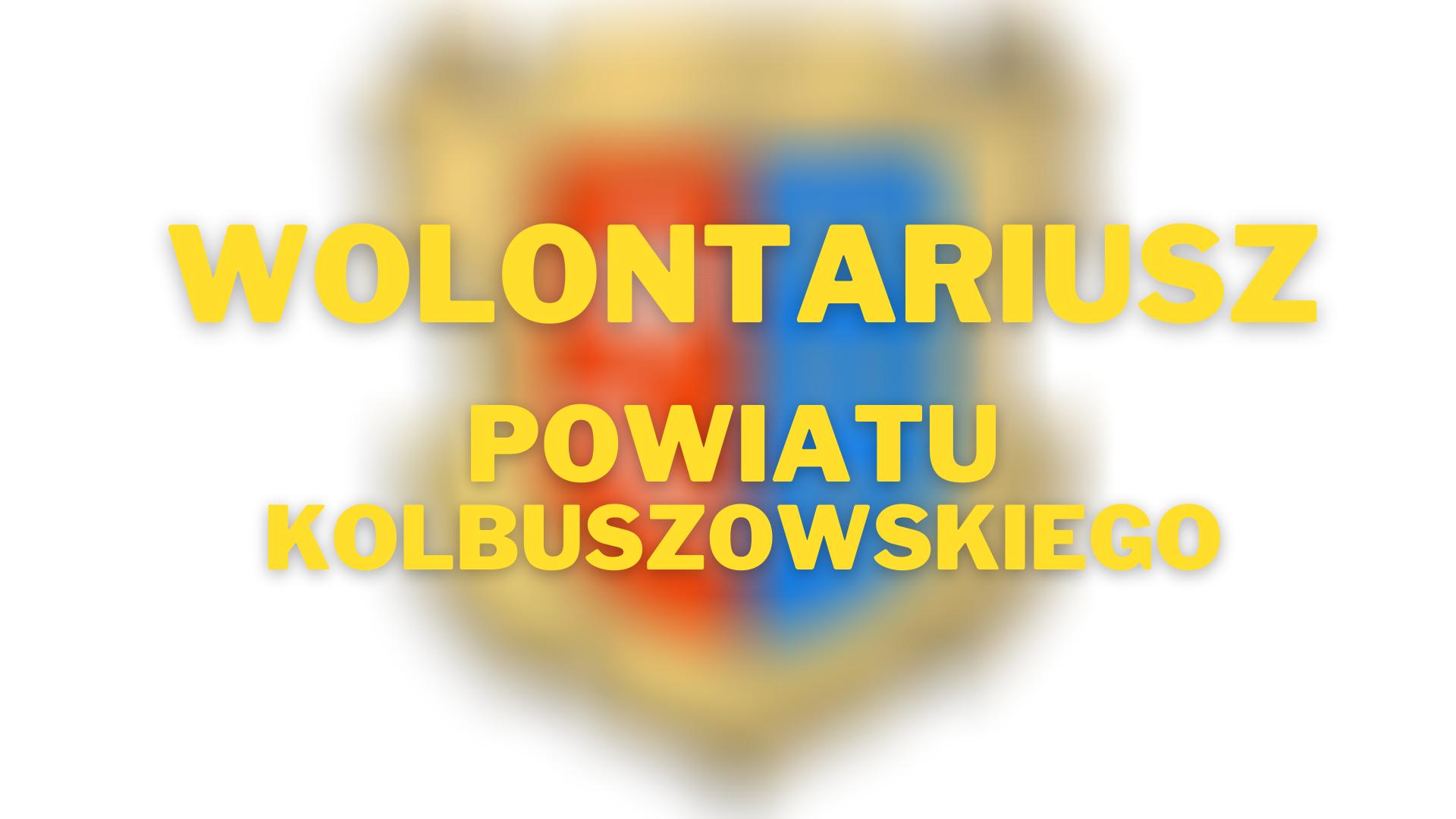 Wolontariusz Powiatu Kolbuszowskiego 2020 roku. Zostało kilka dni - Zdjęcie główne