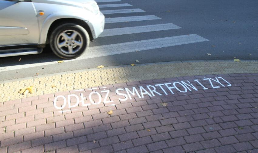 Z REGIONU. Takie napisy zaczęły pojawiać się na ulicach miasta - Zdjęcie główne