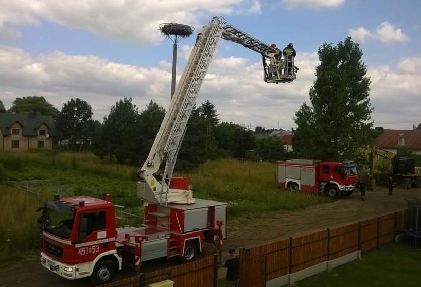 Gmina Kolbuszowa. Mieszkańcy Kolbuszowej Górnej i strażacy ruszyli na pomoc bocianowi, który połknął pas włókniny  - Zdjęcie główne