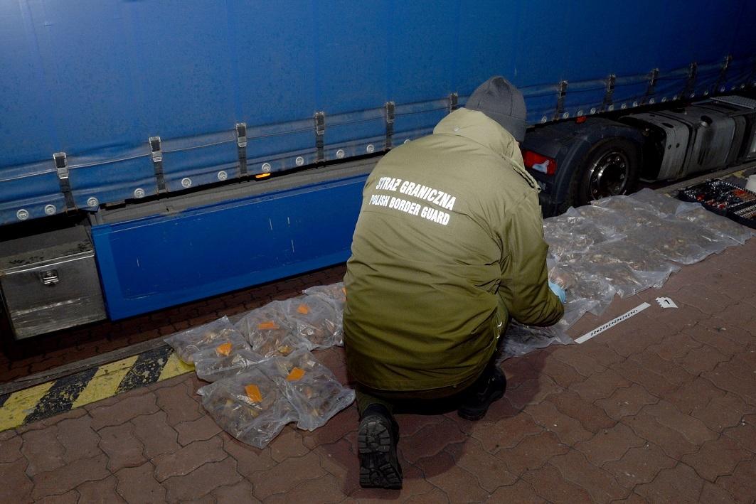 Z PODKARPACIA. Próbował przemycić 47 kg bursztynu... w zbiorniku paliwa! |FOTO| - Zdjęcie główne