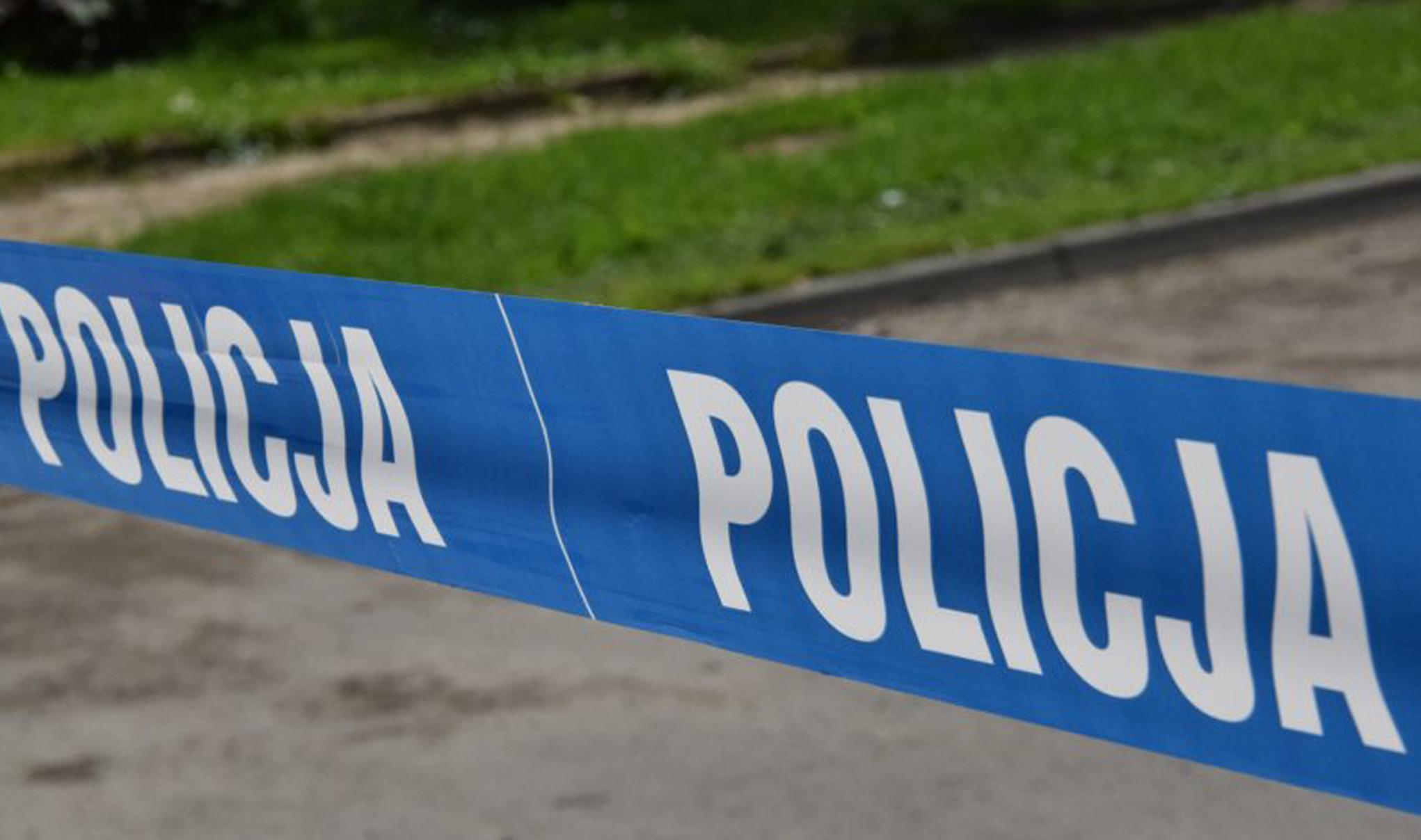Niewybuch znaleziony w lesie w gminie Raniżów - Zdjęcie główne