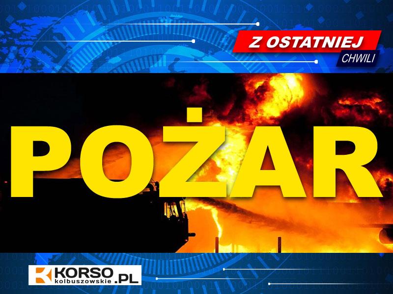 Pożar stodoły w Cmolasie [VIDEO] - Zdjęcie główne