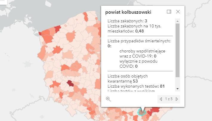 Rośnie liczba zakażeń Covid-19 w powiecie kolbuszowskim [środa - 15 września] - Zdjęcie główne