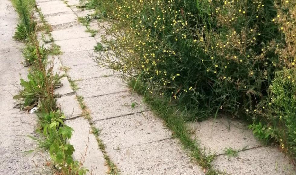 Tak wygląda chodnik w mieście. - Musimy chodzić ulicą! [FOTO] - Zdjęcie główne