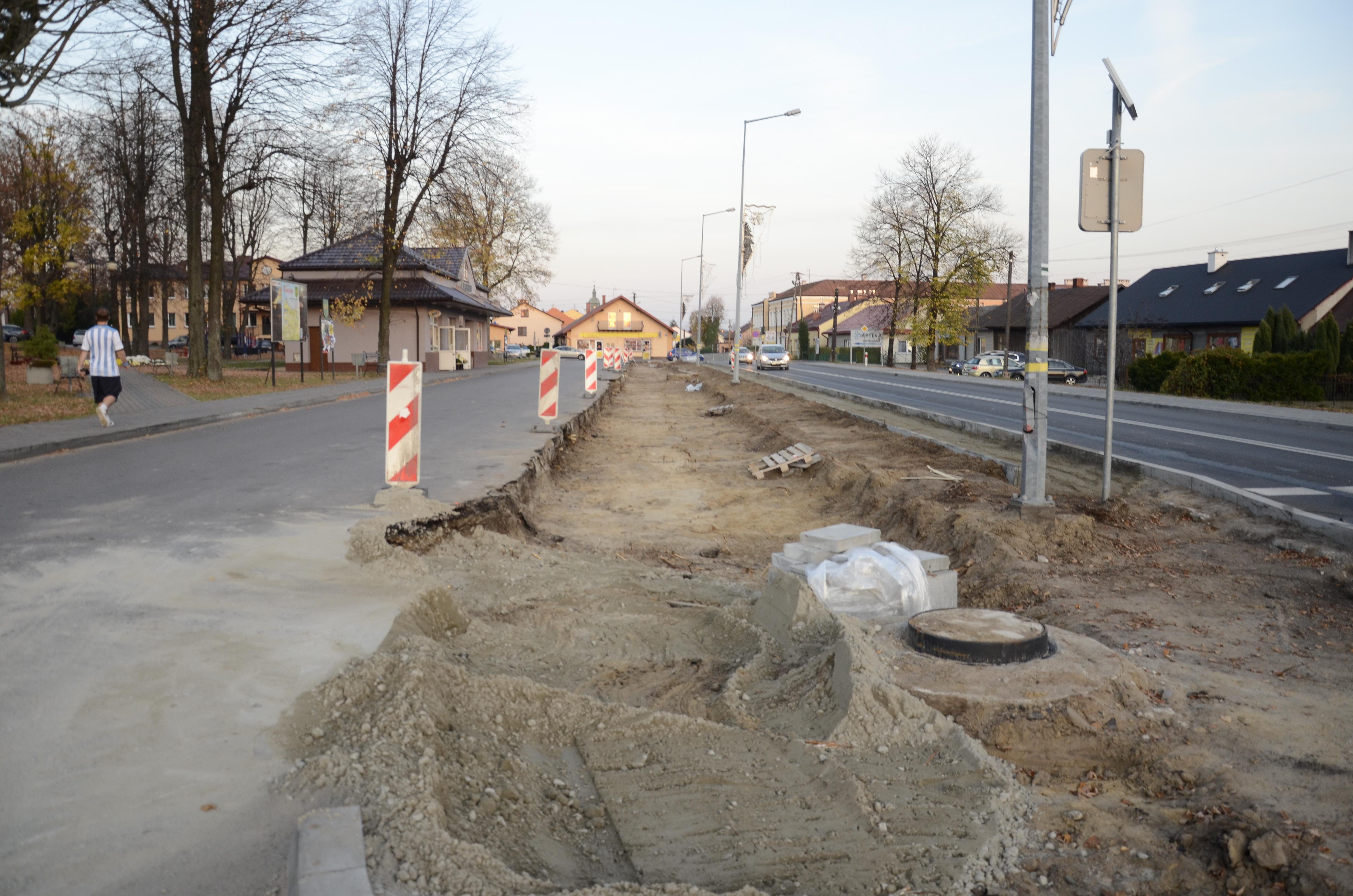 Beton wypiera drzewa. Co teraz? - Zdjęcie główne