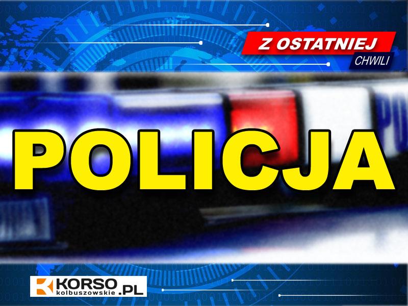 Kominikaty głosowe policjantów w Kolbuszowej. ZOSTAŃ W DOMU!  VIDEO  - Zdjęcie główne