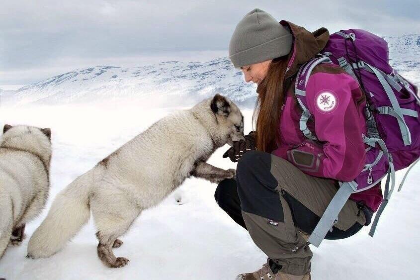 Z PODKARPACIA. Sanoczanka chce przejechać psim zaprzęgiem z Norwegii do Szwecji. Głosuj na Sabinę! - Zdjęcie główne