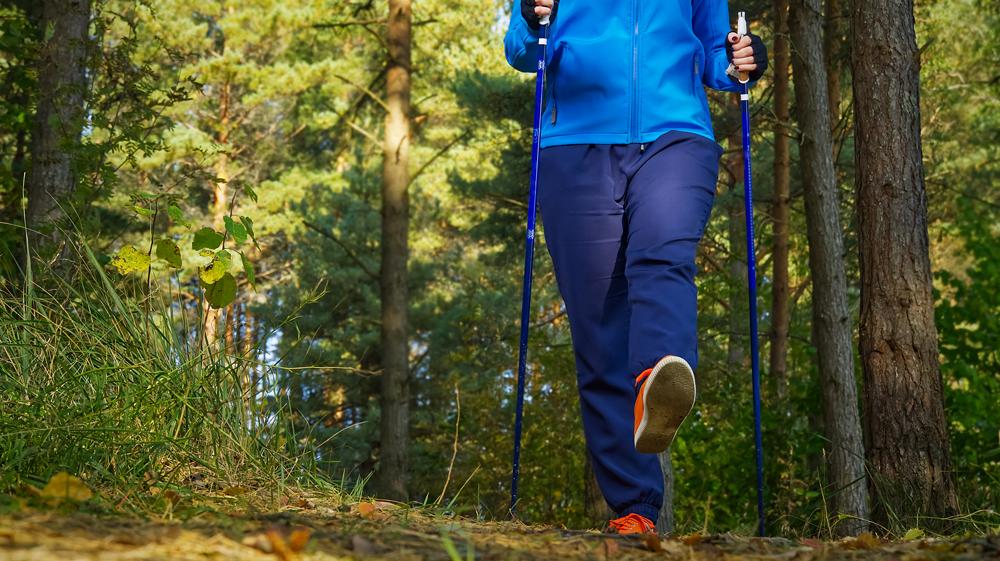 Rajd Nordic Walking w Weryni. Trwają zapisy  - Zdjęcie główne