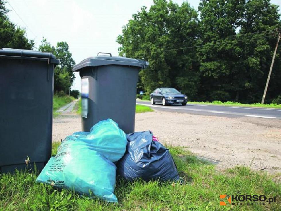 Bez deklaracji podwyżka za śmieci! - Zdjęcie główne