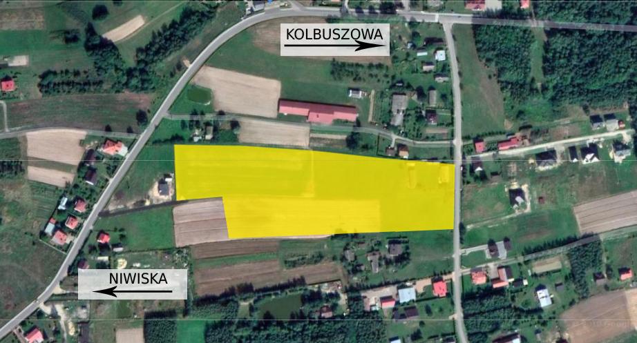 Gmina Kolbuszowa. Na drodze budowy w Nowej Wsi stanęły... indyki  - Zdjęcie główne