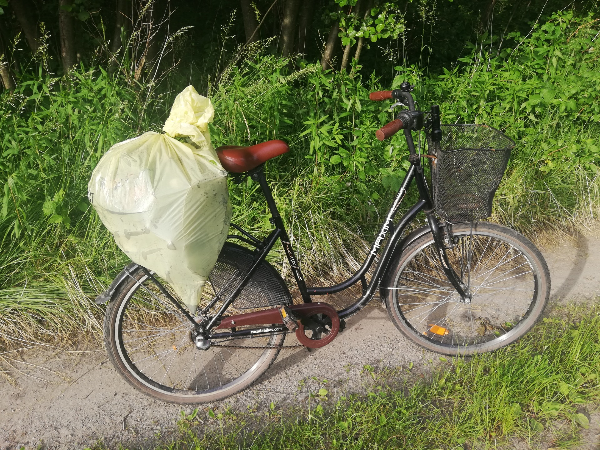 Uczniowie z Weryni zebrali ponad 500 litrów śmieci! [ZDJĘCIA] - Zdjęcie główne