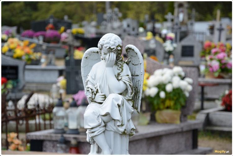 Co z mszami na cmentarzach? Parafie z naszego powiatu informują  - Zdjęcie główne