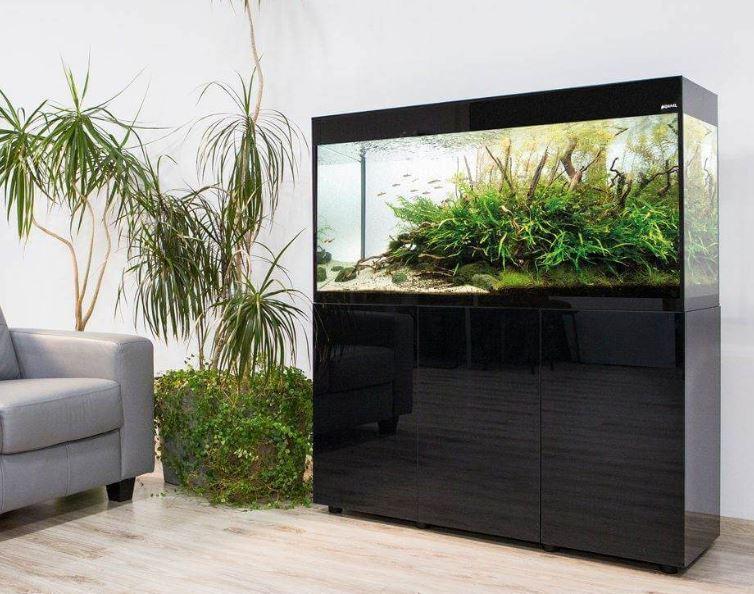 Jak dbać o akwarium, czyli nowości od Aquael, które trzeba poznać! - Zdjęcie główne