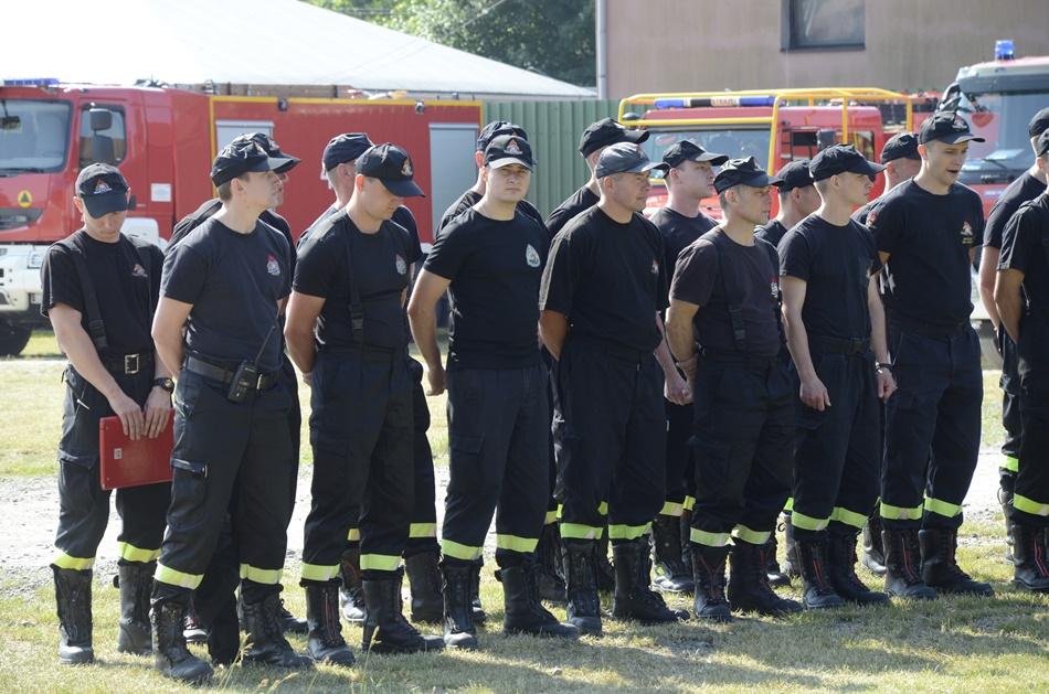 Duży wypadek i pożar lasu. Strażacy z Podkarpacia na miejscu [ZDJĘCIA] - Zdjęcie główne