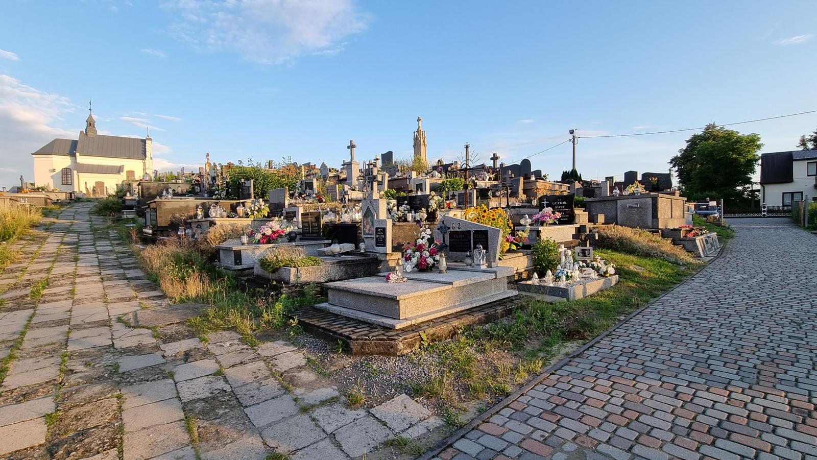 Grobonet Kolbuszowa. Znajdź zmarłych na największym cmentarzu w powiecie  - Zdjęcie główne