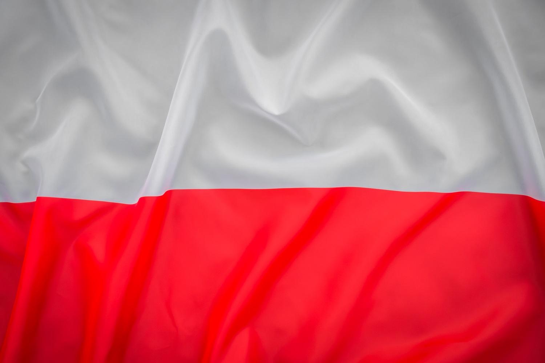 Dziś rocznica Powstania Warszawskiego - o godzinie 17 zawyją syreny - Zdjęcie główne
