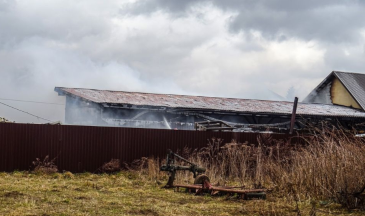 Z PODKARPACIA. Pożar w hali produkcyjnej [FOTO VIDEO] - Zdjęcie główne