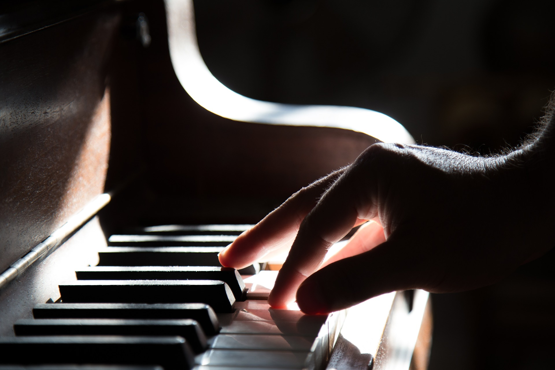 Kolejne recitale w Niwiskach, a także w Dzikowcu. Sprawdź, co w programie - Zdjęcie główne