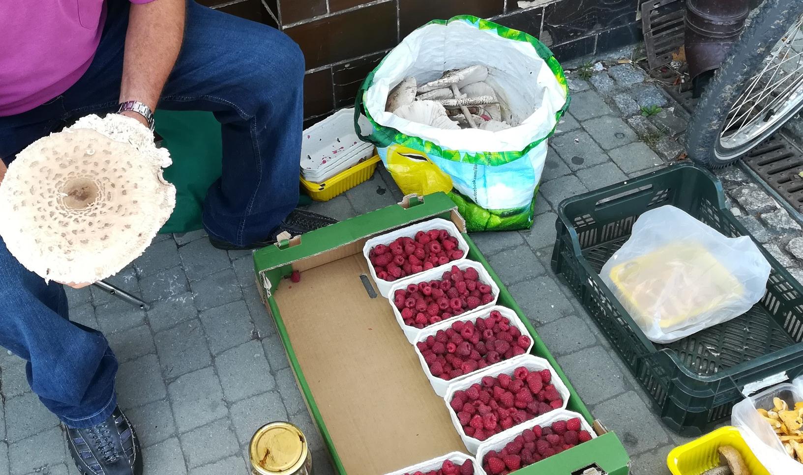 Radny broni osób handlujących na chodnikach na kolbuszowskim rynku. - Sprzedają, żeby dorobić do swojej pensji - Zdjęcie główne