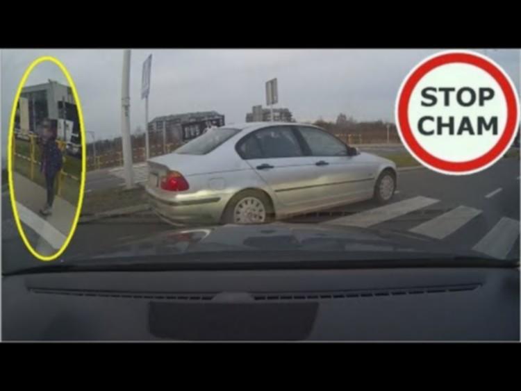 Z PODKARPACIA. Zablokował dwa pasy ruchu a kierowcy nadal ignorowali pieszą  FILM  - Zdjęcie główne