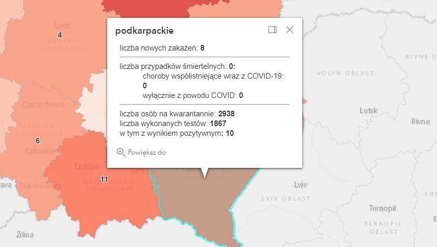 Nowe zakażenia w województwie podkarpackim [niedziela - 25 lipca] - Zdjęcie główne