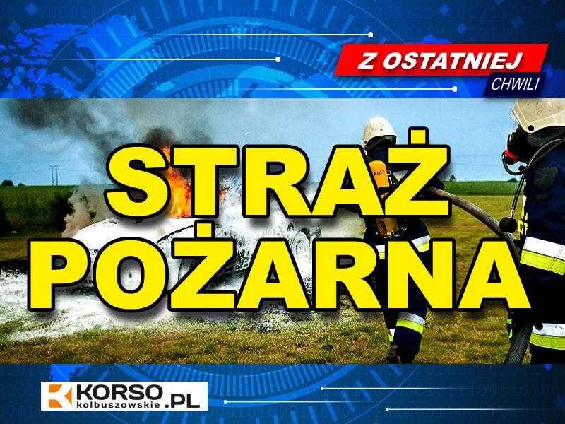 Straż pożarna interweniowała w powiecie kolbuszowskim aż 136 razy [RAPORT STRAŻY] - Zdjęcie główne