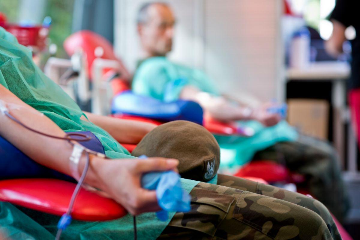 Projekt, który ratuje życie - II edycja projektu Krwioobiegu Terytorialsa - Zdjęcie główne