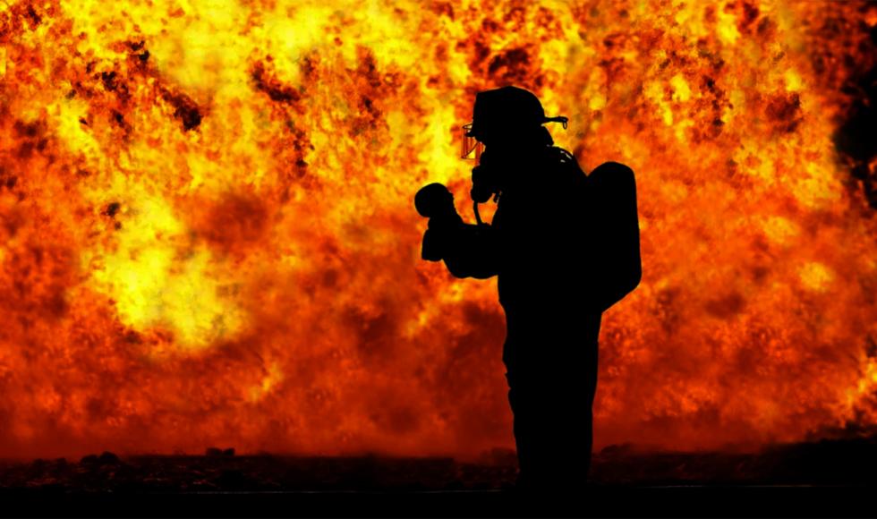 Z PODKARPACIA. Zwierzęta zginęły w ogniu - Zdjęcie główne