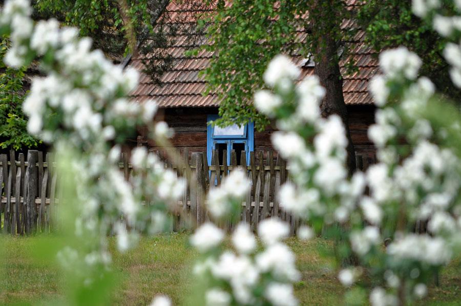 Skansen w Kolbuszowej ponownie otwarty dla zwiedzających - Zdjęcie główne