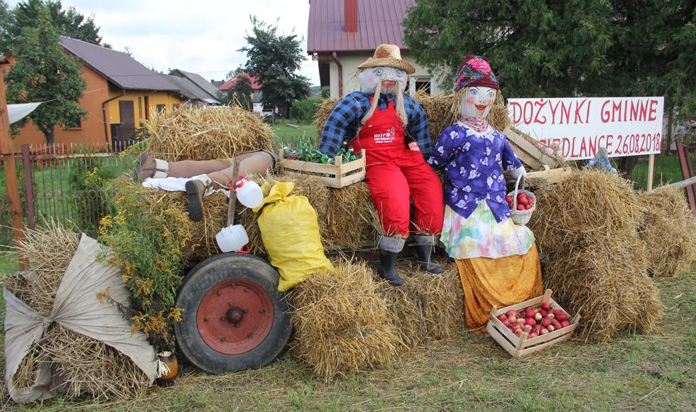 Gigantyczny paw, sztuczny pies i wypchany chłop. Nietypowe dekoracje pojawiły się na terenie gminy Niwiska  - Zdjęcie główne