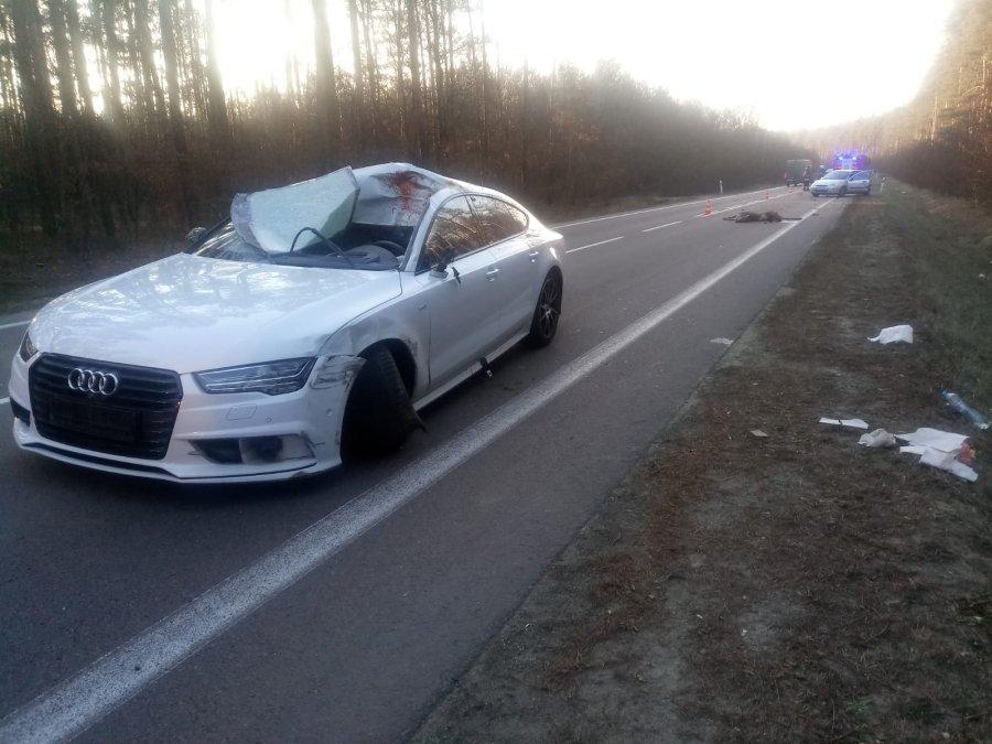 Niebezpieczny wypadek w Przyłęku. Pięć osób trafiło do szpitala po zderzeniu z łanią - Zdjęcie główne