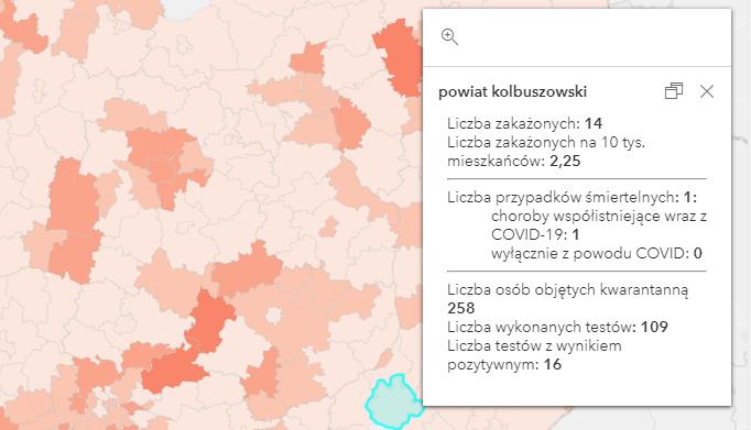Raport Covid-19 w powiecie kolbuszowskim [wtorek - 20 kwietnia] - Zdjęcie główne